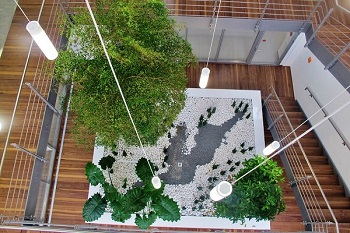 Planter pool with seatings in a atrium for plants