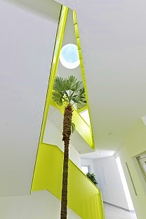 interior_planting_Trachicarpus_wagnerianus_palm_stairway_buying_plantshop