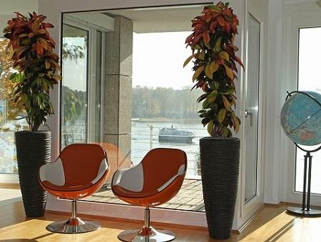 office_greening_croton_anthracite_pot_berlin