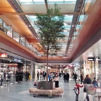 Tree shopping mall buy plants vorarlberg