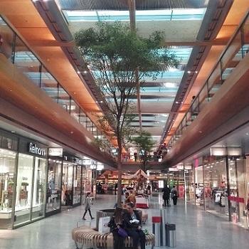 bucida tree shopping mall Austria buy