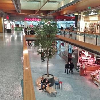 shopping mall center tree plants buy