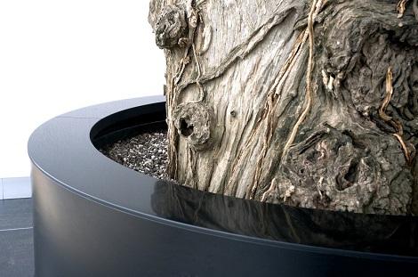 interior_greening_special_planter_buy_online