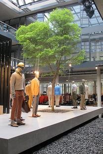 plants_greening-fashion_store_interior_buy_online
