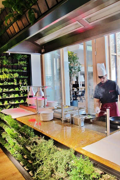 bio herbaceous greenwall kitchen hotel buy online