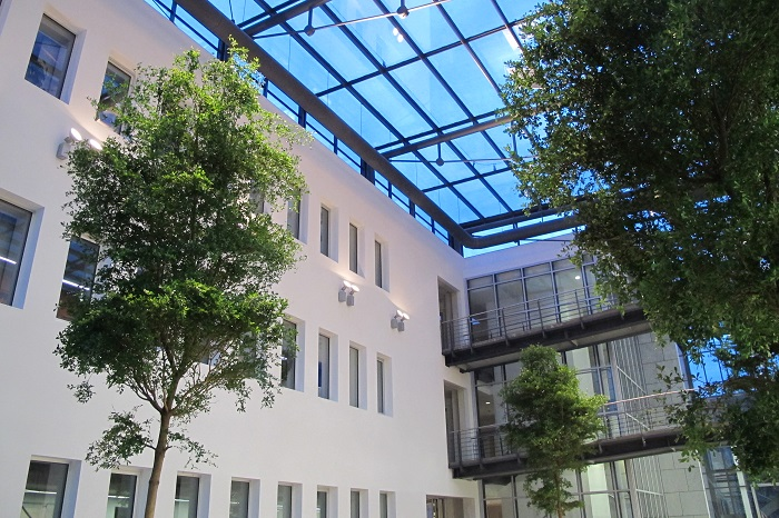 big hall greenings with tropical plants
