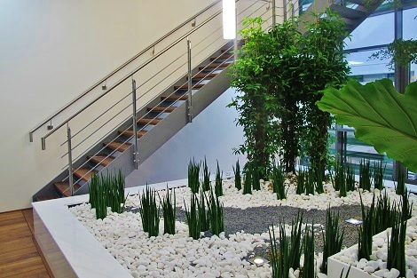Interior escalera atrio plantas tropicales