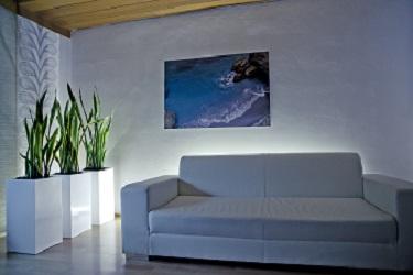 macetas-para-plantas-modernas-comprar-on-line