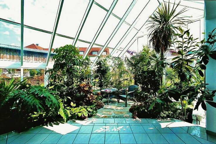 plantas_interior_invernadero_hoteles_villa_privados_comprar_on-line