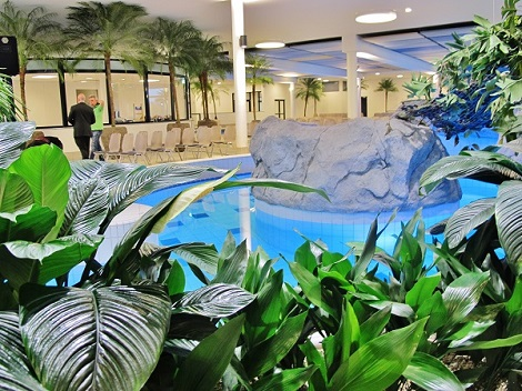 Plantas y recipientes para Pools bano termal y piscinas interior