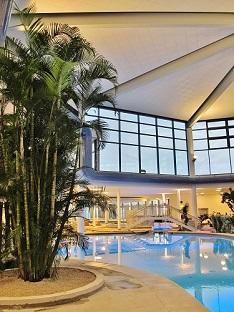 areca dypsis palmera para Pools bano termal y piscinas interior