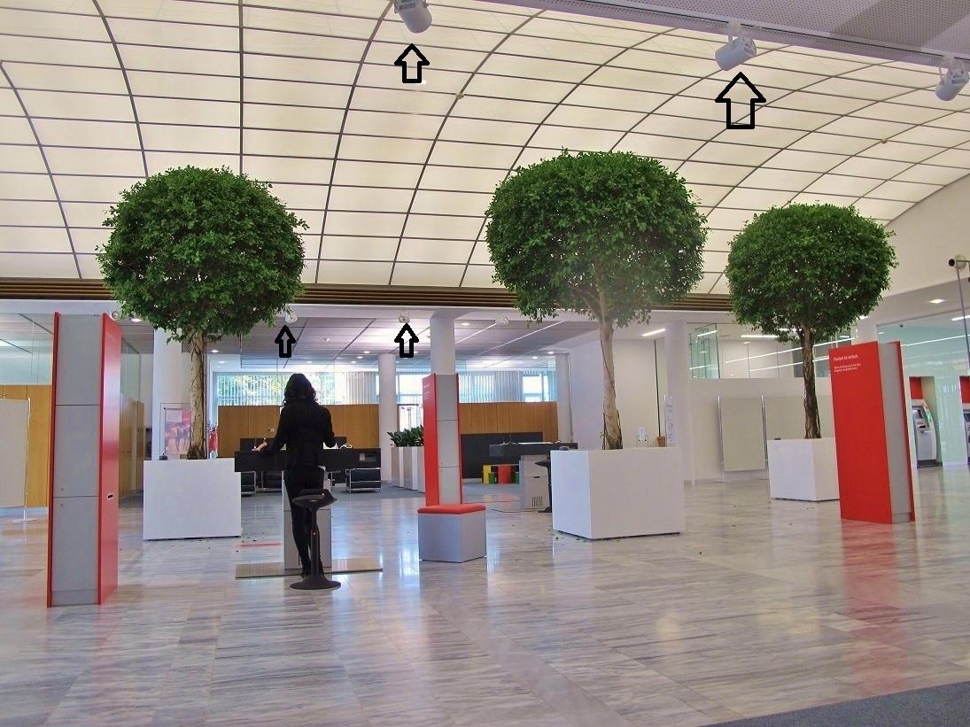 Pflanzenleuchten auf Schienen Bankhaus Pflanzen Begruenung