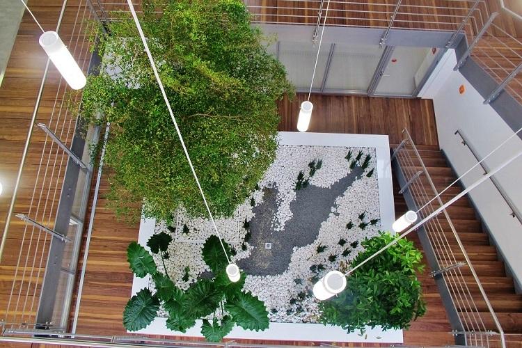 Architekten podium pflanzen innenraum gruen informationen