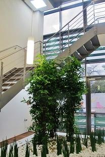 Pflanzen am Treppenaufgang München