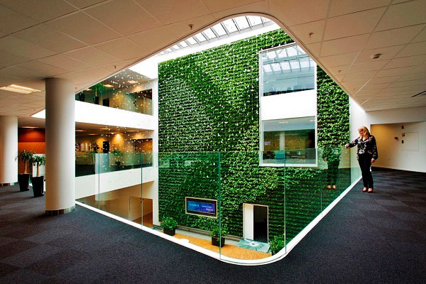 Grüne tropische Pflanzenwand
