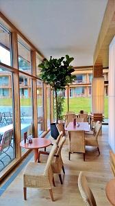 Ficus lyrata hochstamm restaurant pflanze kaufen