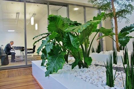 gruener konferenzraum mit pflanzen im atrium muenchen