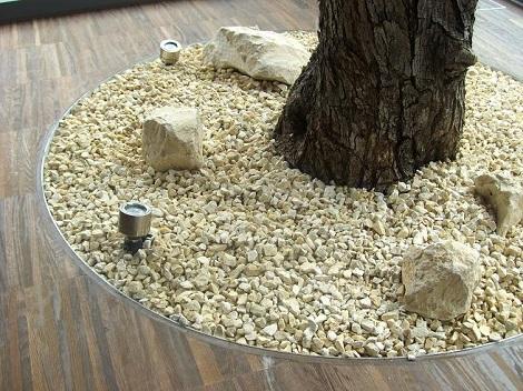 innenraumbegruenung_wintergarten_modern_olivenbaum_bodenpflanzung
