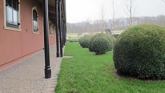 Creation_de_espaces_verts_pour_le_haras_se_composant_de_plante