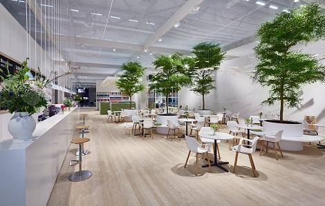 creation-de-espaces-verts-dans-la-restauration-avec-bucida
